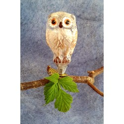 Miniature Owl