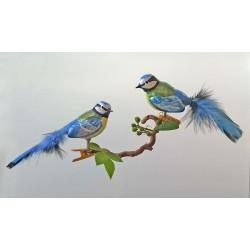 Blaumeisenpaar