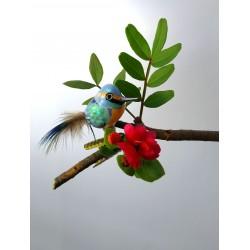 Miniature Kingfisher