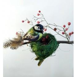 Kohlmeisen Nest